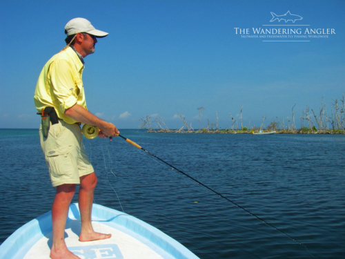 The Wandering Angler - Belize Lodge003