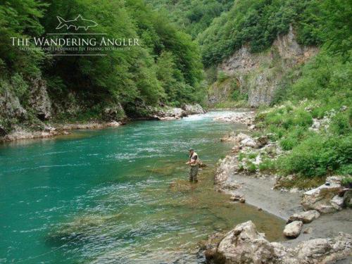 The Wandering Angler - Hucho fishing006