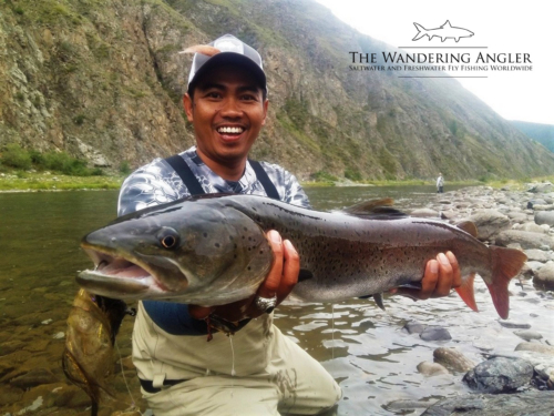 The Wandering Angler - Mongolia taimen0009